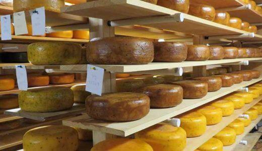 PEIの美味しいチーズはいかが