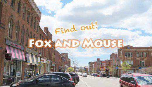 シャーロットタウンでキツネとネズミを追え!